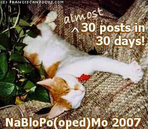 (almost) 30 posts in 30 days: NaBloPo(oped)Mo 2007